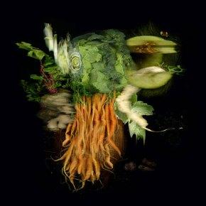 Nature Morte - carrots (series #1), 2010
